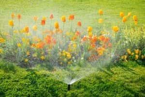 garden plumbing